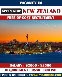 Vacancy in New Zealand